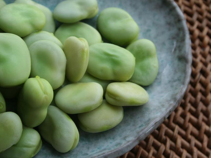 zen-and-fava-beans