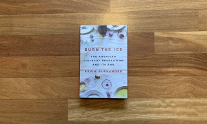 Burn the Ice – Is the Revolution Over?